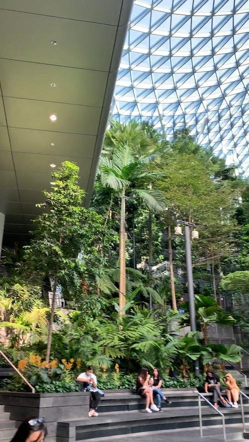 World's Tallest Indoor Waterfall at Changi Airport Singapore