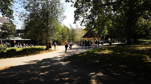 People Strolling In The Park