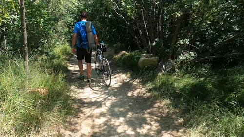 A Man Walking His Mountain Bike On The Mountain Trail