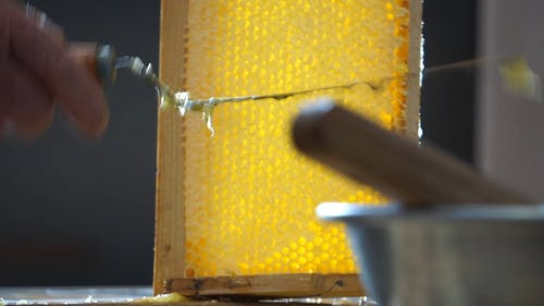 Scraping The Honey Off The Wooden Tray