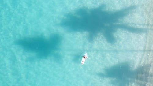 Aerial View of a Person on a Surf Board