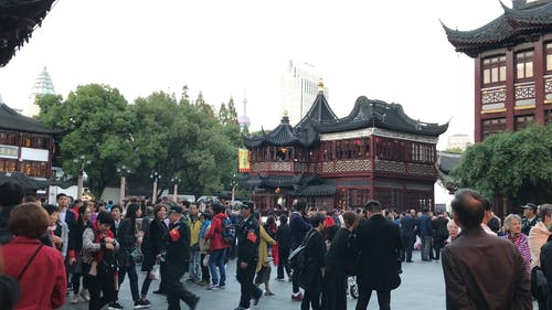 Crowd of Tourists Walking