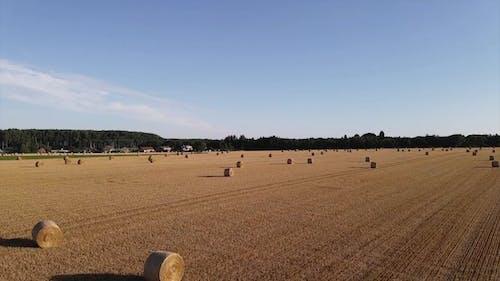Drone Footage of a Farmland