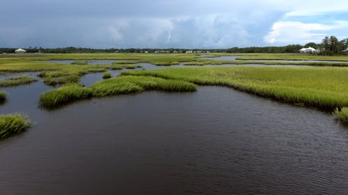 A Drone Video of a Marsh Landscape