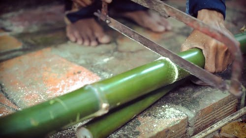 Cutting Bamboo Stem into Two Parts