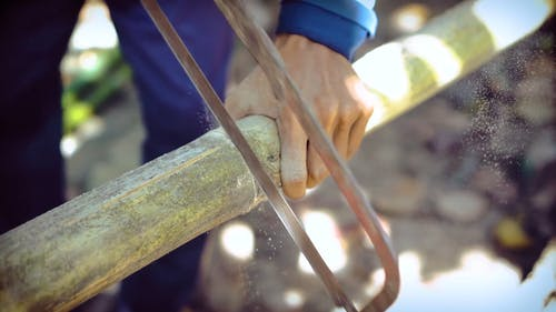 Man Using Hacksaw for Cutting Bamboo Stem