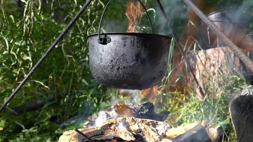 Cooking Food During Forest Camping