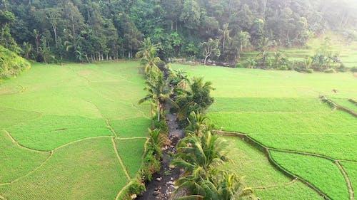 Drone Footage of Farm Fields