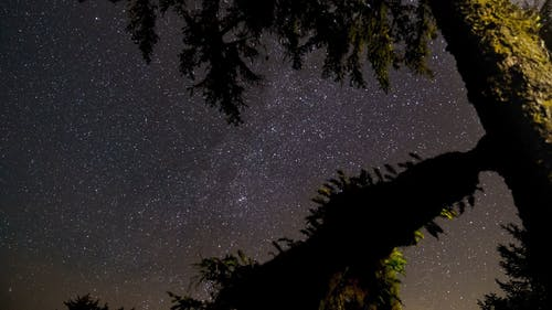 Star Gazing On A Clear Starry Night