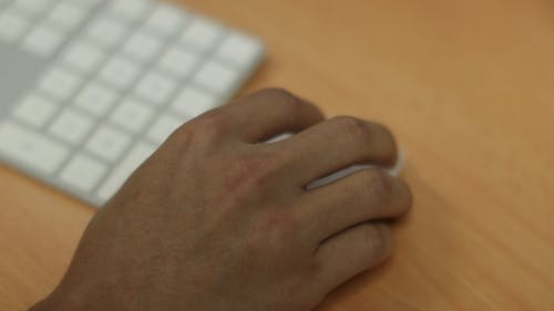 A Person Using Wireless Keyboard and Mouse