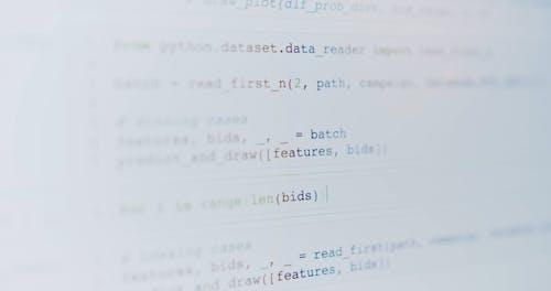 Focused Shot of Coding