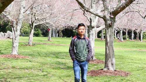 Boy Walking in a Park Full of Cherry Blossom Trees