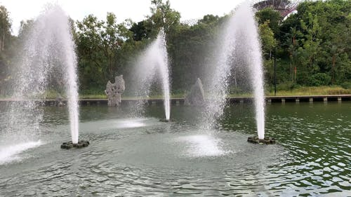 Beautiful Fountains in a Park