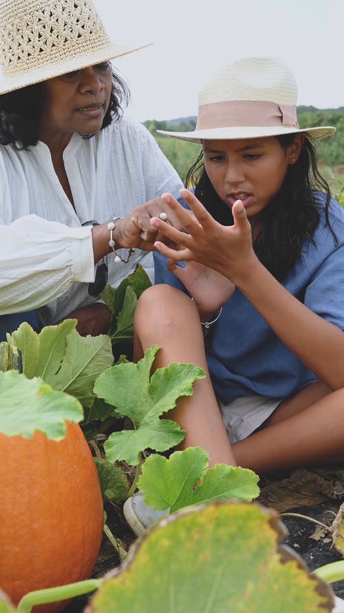 Women Getting Itch From A Pumpkin Plants
