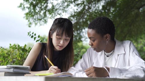 A Student Tutoring Her Fellow Student