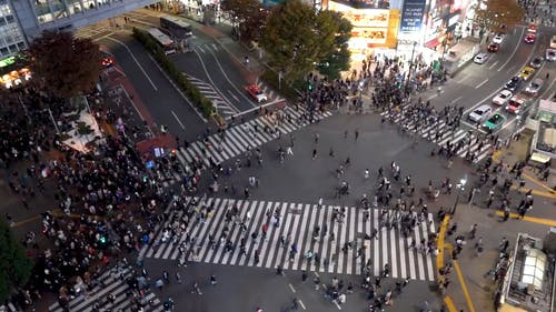 People Crossing on a Busy Pedestrian
