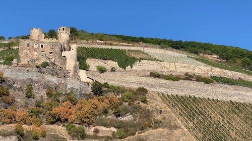 Castle on a Farmland