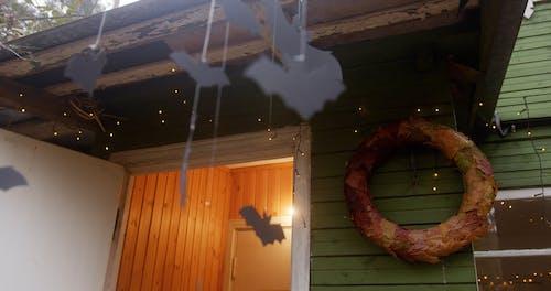 Close-Up Video of Hanging Paper Bats