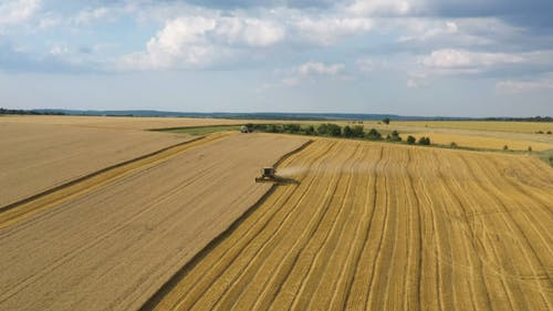 Drone Footage of a Harvester in Action