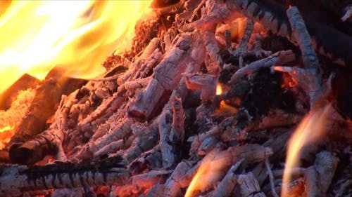 Close Up Video of Burning Wood