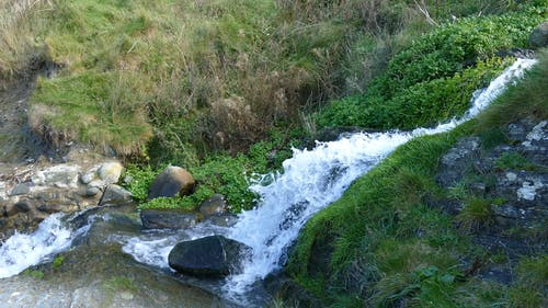 A Water Flowing in a Cascade