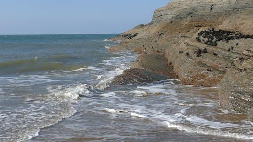 Waves Crashing the Shore