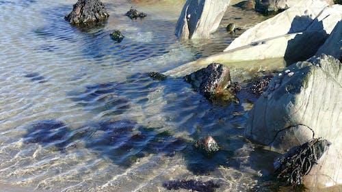 A Rock Pools on Seashore
