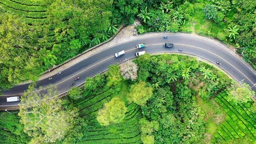 Top View of Vehicles Traveling on a Curvy Road
