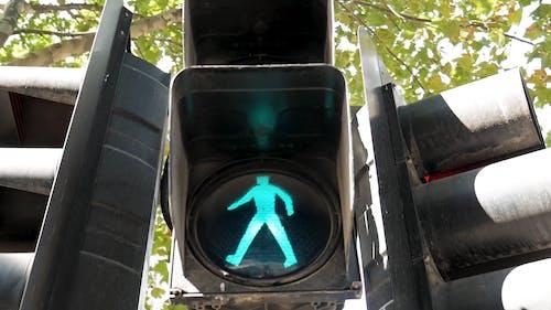 Traffic Light On Green For Pedestrian Walking