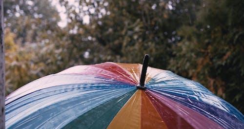 A Multicolored Umbrella