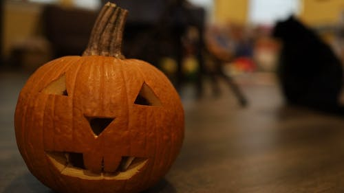 Carved Pumpkin with a Blurred Black Cat on Background