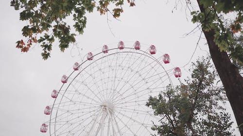 Video of a Ferris Wheel