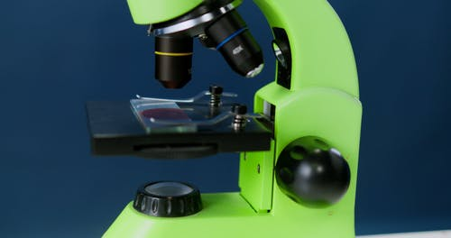 Woman Watching Blood Through a Microscope