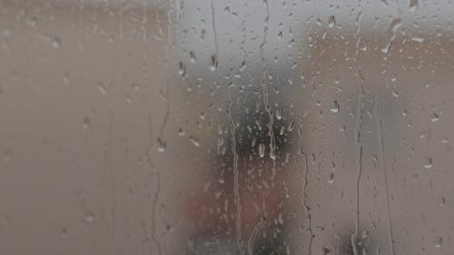 Video of Raindrops on a Glass Window