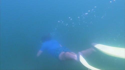 A Scuba Diver in the Ocean