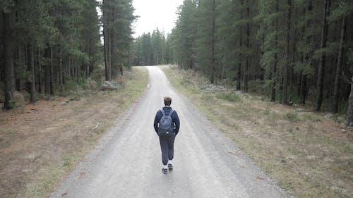 Man Walking on Road Among Pine Trees