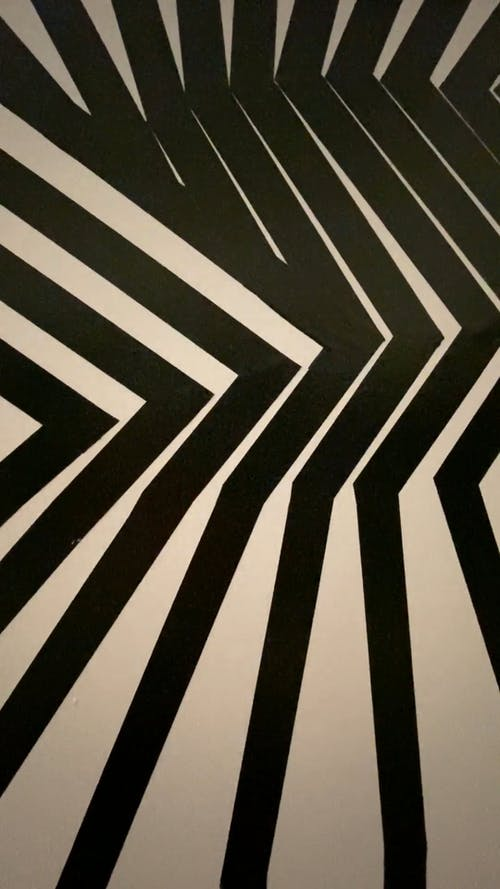 Vertical Video of Stripes Geometric Black and White Background