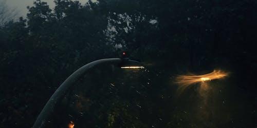 Street Lamps on Rainy Evening