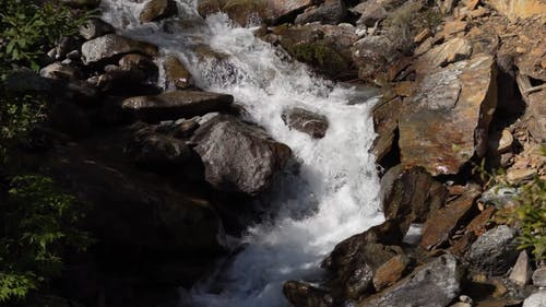 River Flowing  with Rocks