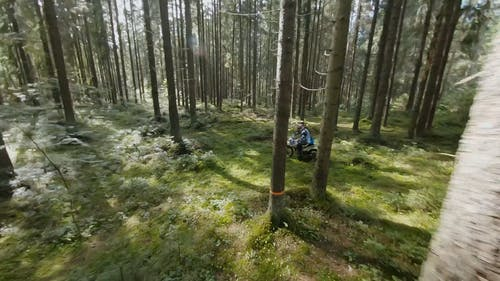 Aerial Footage of a Motocyclist in the Forest