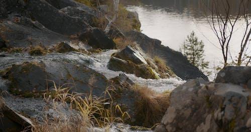 Waterfall in teh Nature