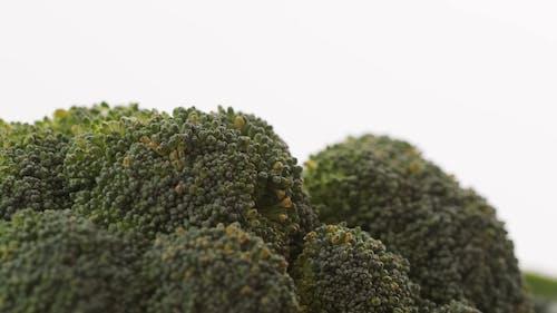 Close Up Shot of a Broccoli