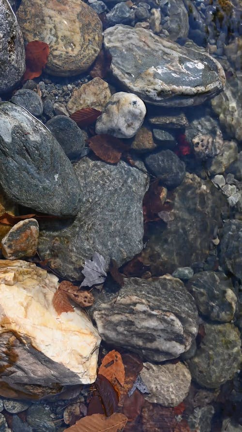 Close Up Shot of Clear Water in the River