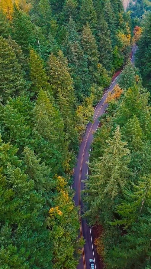 Aerial Footage of a Road