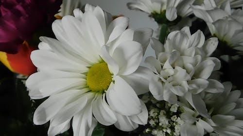 White Flowers Arrangement