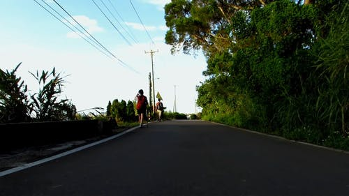 Two People Walking Along the Road