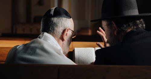 Back View of Two Elderly Men Talking to Each Other