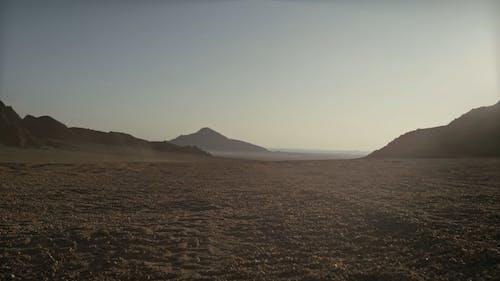 Riding ATV In The Desert