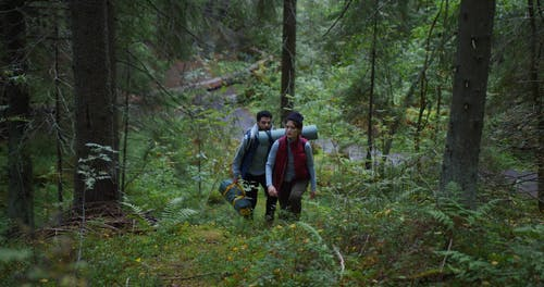 A Couple Hiking in a Forest
