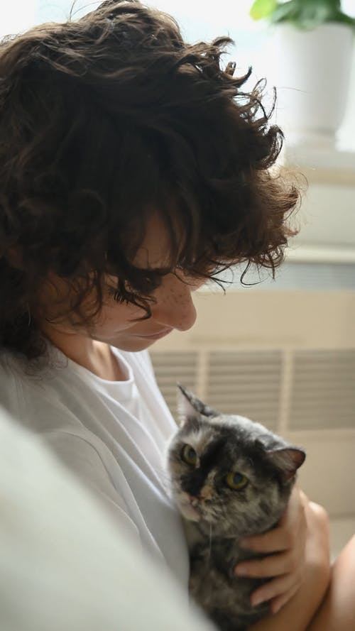 Close Up Video of a Woman Petting a Cat